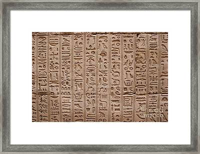 Hieroglyphs At The Temple Of Philae Framed Print by Stephen & Donna O'Meara