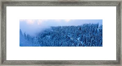 High Angle View Of A Forest, Mt Baker Framed Print by Panoramic Images