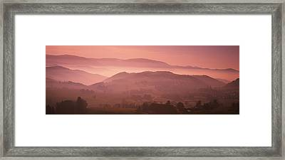 High Angle View Of A Forest, St. Peter Framed Print by Panoramic Images