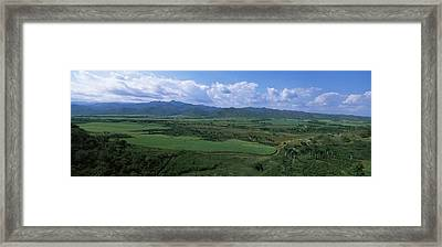 High Angle View Of Sugar Cane Fields Framed Print by Panoramic Images