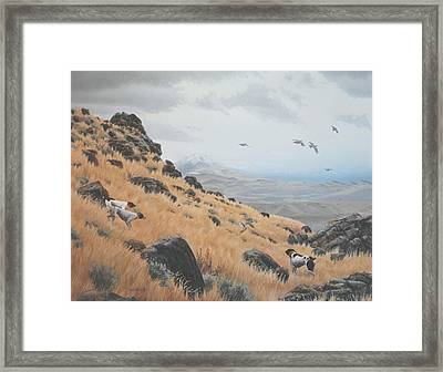 High Desert Dreams Framed Print by Peter Mathios