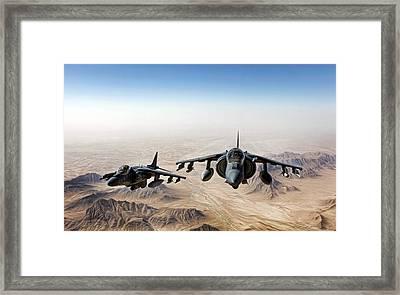 High Desert Harriers Framed Print by Peter Chilelli