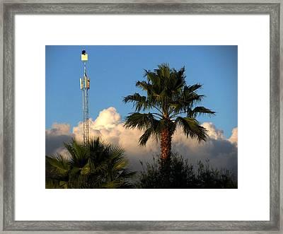 High Hunting Framed Print by Zina Stromberg