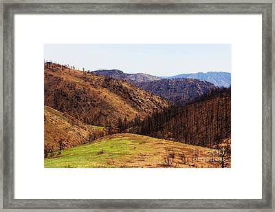 High Park Fire Burn Framed Print by Jon Burch Photography