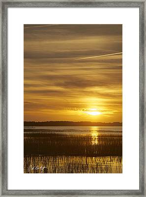 High Tide In The Marsh Framed Print by Phill Doherty