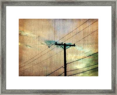High Wire Framed Print by Lori Bourgault