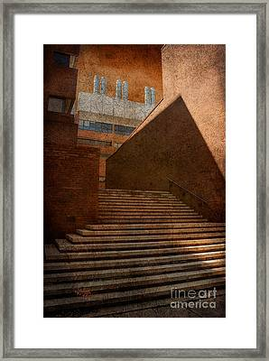 Higher Learning Framed Print by Lois Bryan