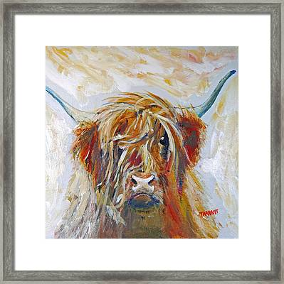 Highland Cow Framed Print by Peter Tarrant