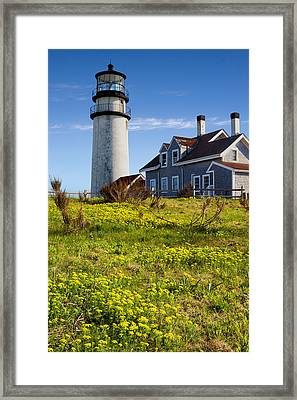 Highland Light Spring Framed Print by Bill Wakeley