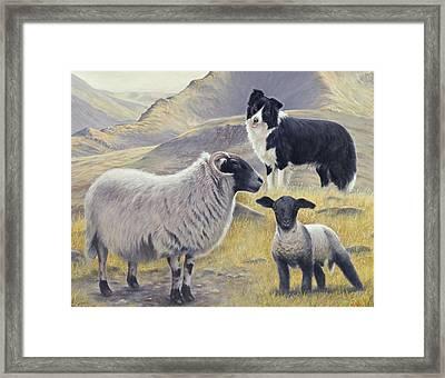Highland Spirit Framed Print by John Silver