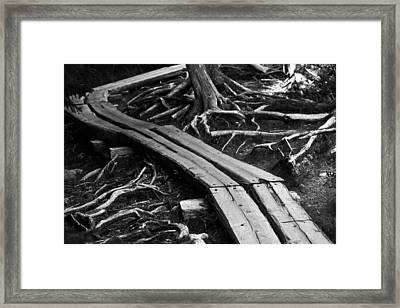 Hiking Trail In Black And White Framed Print by Andy Fung