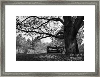 Hillsdale College Slayton Arboretum Framed Print by University Icons