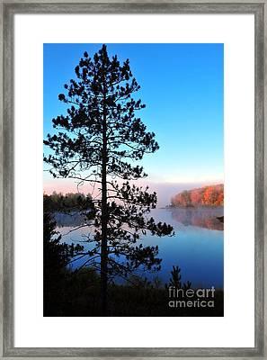 Hilltop View Of Stoneledge Lake Framed Print by Terri Gostola