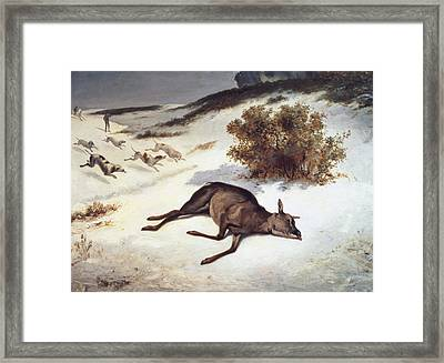 Hind Forced Down In The Snow Framed Print by Gustave Courbet