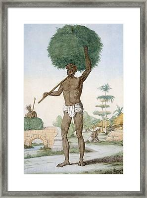 Hindu Servant Cutting Grass, The Framed Print by Franz Balthazar Solvyns