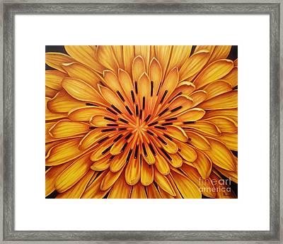 Hipnose Framed Print by Paula L