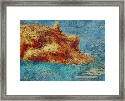 Hippo - Happened At The Zoo Framed Print by Jack Zulli