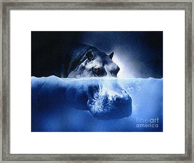 Hippo Framed Print by Robert Foster