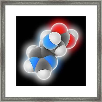 Histidine Molecule Framed Print by Laguna Design