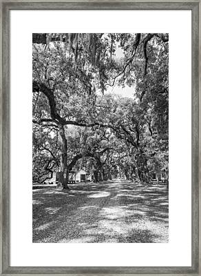 Historic Lane Bw Framed Print by Steve Harrington