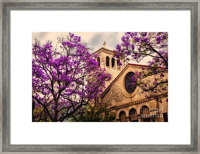 Historic Sierra Madre Congregational Church Among The Purple Jacaranda Trees  Framed Print by Jerry Cowart