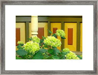 Historical Beauty Framed Print by Randy Rosenberger