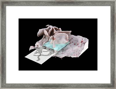 Hiv Infected Macrophage Framed Print by Sriram Subramaniam/national Institutes Of Health