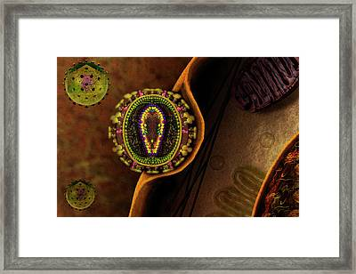 Hiv Particle Framed Print by Carol & Mike Werner