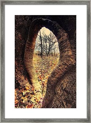 Hobbitt Vip Entrance Framed Print by Robert McCubbin