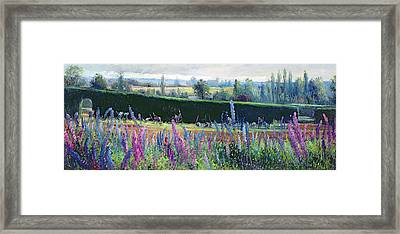 Hoeing Against The Hedge Framed Print by Timothy  Easton