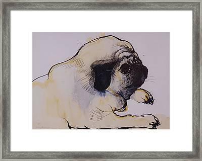 Hogarth Framed Print by Brenda Brin Booker