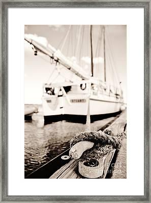 Hold Framed Print by Lynda Dawson-Youngclaus