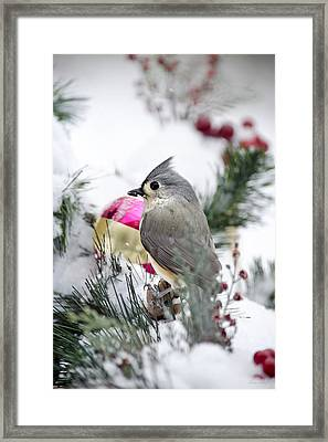Holiday Cheer With A Titmouse Framed Print by Christina Rollo