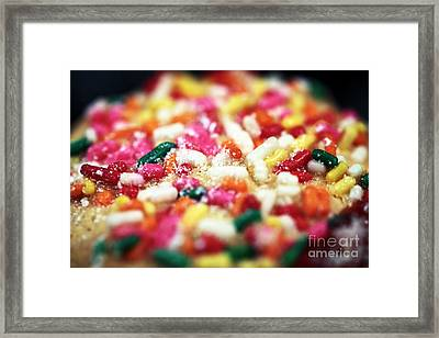 Holiday Cookie Framed Print by John Rizzuto