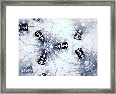 Holy Vision Through A Kaleidoscope Framed Print by Sandra Pena de Ortiz