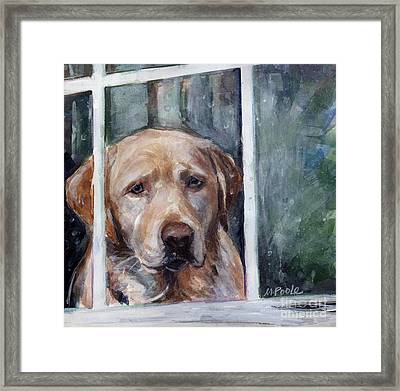 Homebody Framed Print by Molly Poole