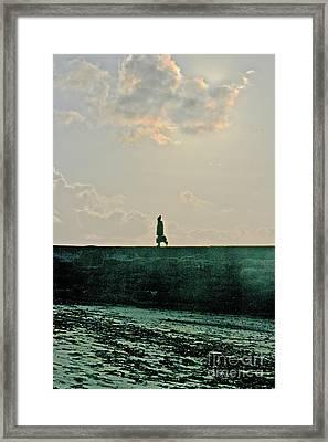 Homeward Bound Framed Print by Terri Waters