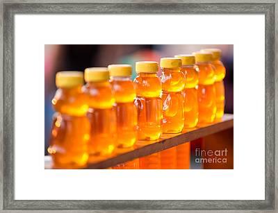 Honey Bears  Framed Print by Iris Richardson