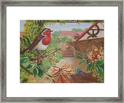 Honey Birds Framed Print by David Paterson