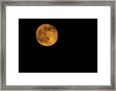 Man In The Moon Framed Print featuring the photograph Honey Moon Full Moon 2014 by Dan Sproul
