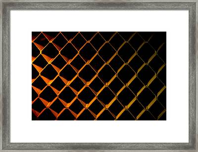 Honeycomb Framed Print by David Morefield