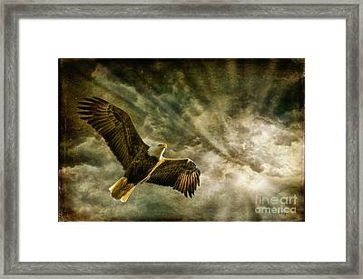 Honor Bound In Blue Framed Print by Lois Bryan