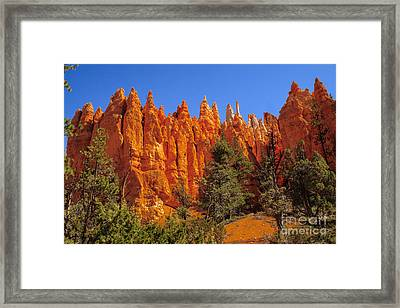 Hoodoos Along The Trail Framed Print by Robert Bales