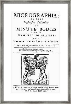 Hooke Micrographia, 1665 Framed Print by Granger