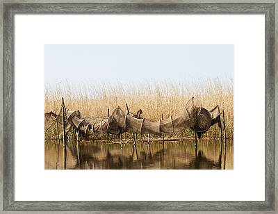 Hoop Nets Drying In The Sun Framed Print by Odd Jeppesen