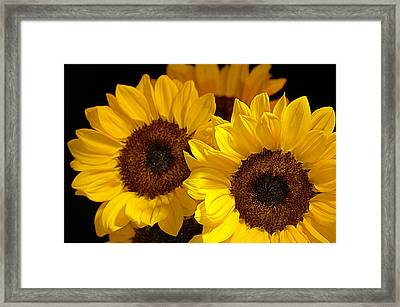 Hope And Happiness... Framed Print by Tanya Tanski