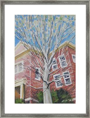 Hope Springs Framed Print by Grace Keown