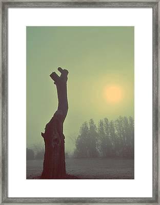 Hopeless Framed Print by Marianna Mills