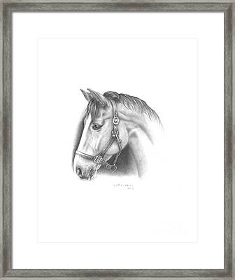 Horse-2 Framed Print by Lee Updike