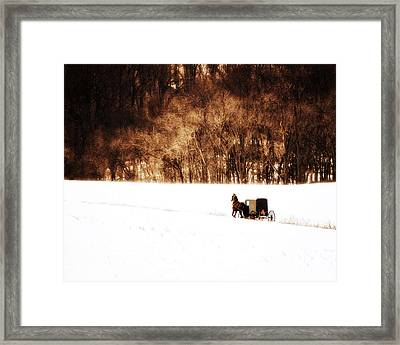 Horse And Buggy Framed Print by Vicki Jauron